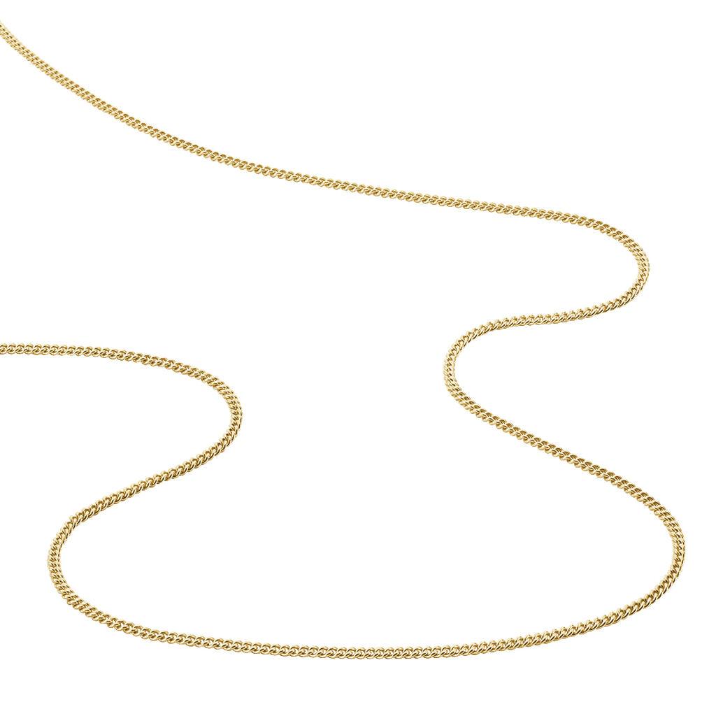 Chaîne Gerlinde Maille Gourmette Plaque Or Jaune - Chaines Homme | Histoire d'Or