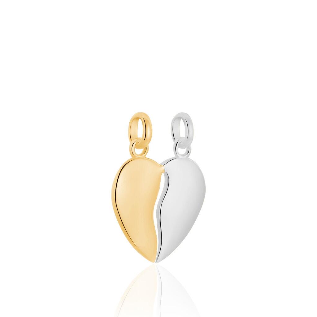 Pendentif Marie-stephanie Plaque Or Bicolore - Pendentifs Coeur Femme   Histoire d'Or