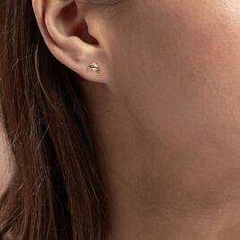 Boucles D'oreilles Puces Fulvie Dauphin Or Jaune - Clous d'oreilles Femme | Histoire d'Or