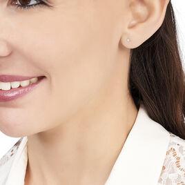 Boucles D'oreilles Or Jaune Puce Oxyde - Clous d'oreilles Femme | Histoire d'Or