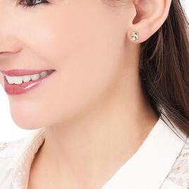 Boucles D'oreilles Puces Firdes Plaque Or Jaune Oxyde De Zirconium - Boucles d'oreilles fantaisie Femme | Histoire d'Or