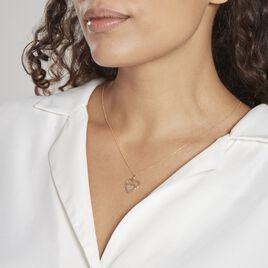 Pendentif Eudocie Double Coeurs Or Bicolore - Pendentifs Coeur Femme   Histoire d'Or