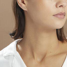 Bijoux D'oreilles Eloiza Or Jaune Oxyde De Zirconium - Boucles d'Oreilles Plume Femme | Histoire d'Or