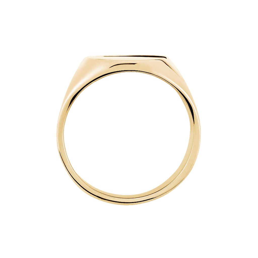 Chevalière Sharlyne Plaque Or Jaune Oxyde De Zirconium - Chevalières Femme | Histoire d'Or