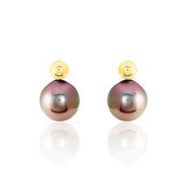 Boucles D'oreilles Puces Baroque Or Jaune Perle De Culture De Tahiti - Clous d'oreilles Femme | Histoire d'Or