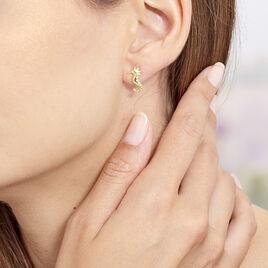 Boucles D'oreilles Puces Ambrosie Hippocampe Or Jaune - Clous d'oreilles Femme   Histoire d'Or