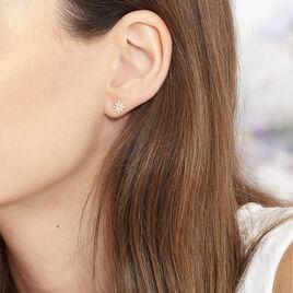 Boucles D'oreilles Puces Terry Or Jaune Calcedoine Et Oxyde - Boucles d'Oreilles Etoile Femme | Histoire d'Or