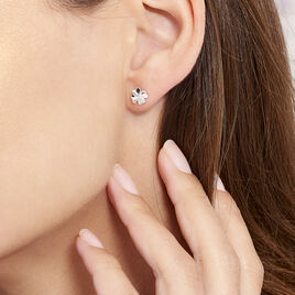 Boucles D'oreilles Puces Luce Argent Blanc Oxyde De Zirconium - Boucles d'Oreilles Trèfle Femme | Histoire d'Or