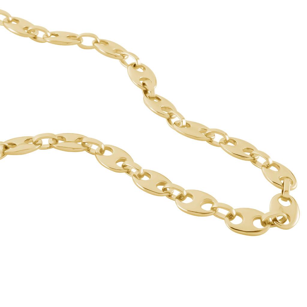 Collier Capucine Maille Grain De Cafe Plaque Or Jaune - Chaines Femme | Histoire d'Or