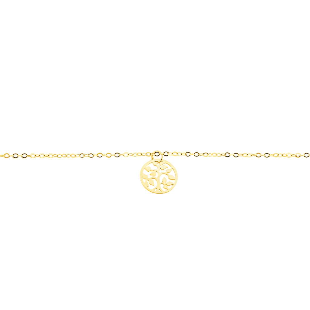 Chaîne De Cheville Arbre De Vie Or Jaune - Bijoux Arbre de vie Femme | Histoire d'Or
