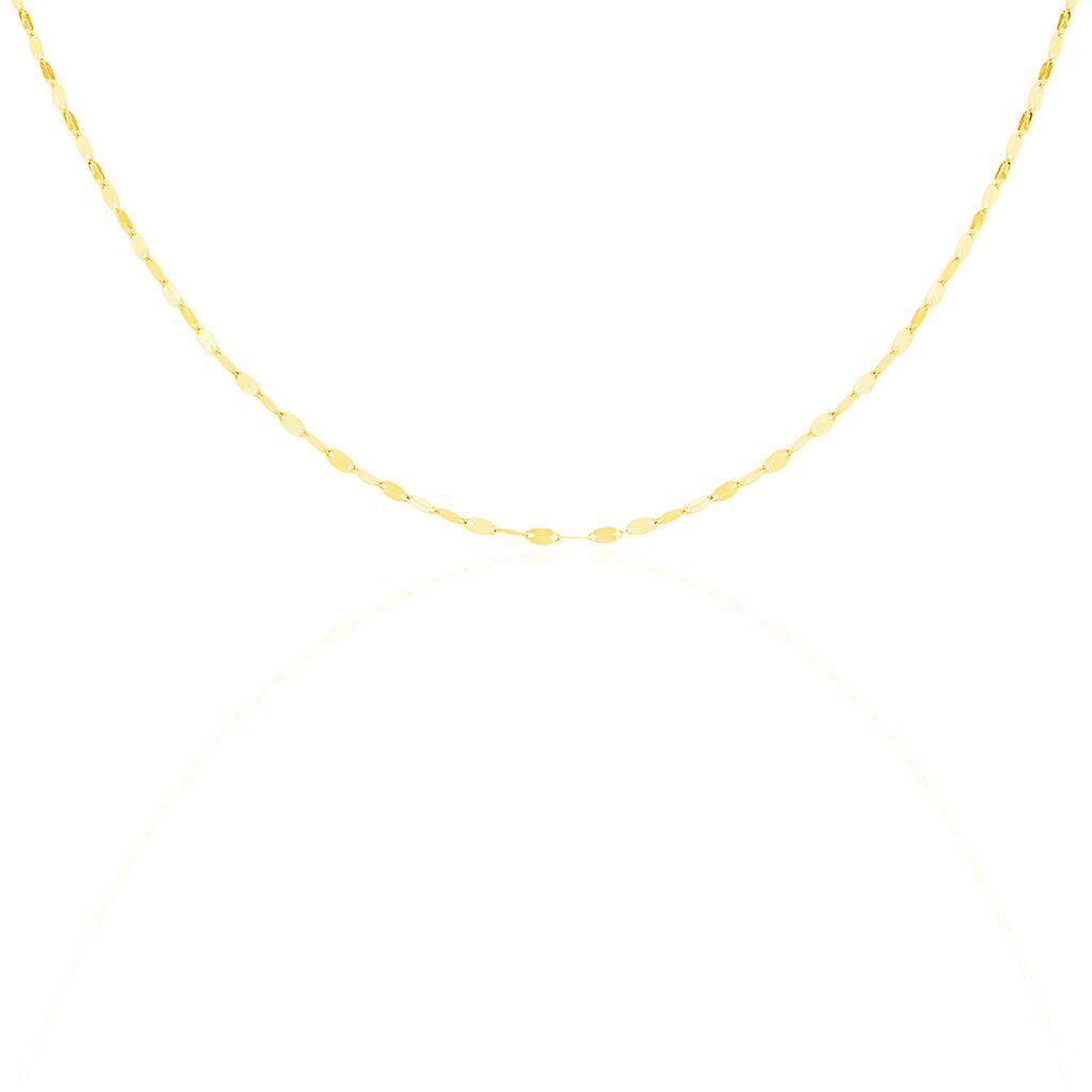 Chaîne Camelie Or Jaune - Chaines Femme | Histoire d'Or