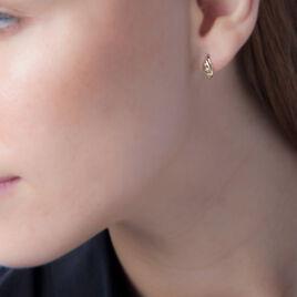 Boucles D'oreilles Pendantes Cecile-marie Or Bicolore Diamant - Boucles d'oreilles pendantes Femme | Histoire d'Or