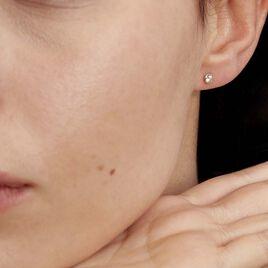Boucles D'oreilles Puces Daria Serti Clos Or Jaune Oxyde De Zirconium - Clous d'oreilles Femme   Histoire d'Or