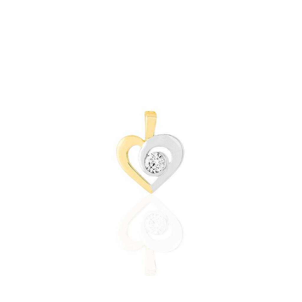 Pendentif Adido Or Bicolore Oxyde De Zirconium - Pendentifs Coeur Femme   Histoire d'Or