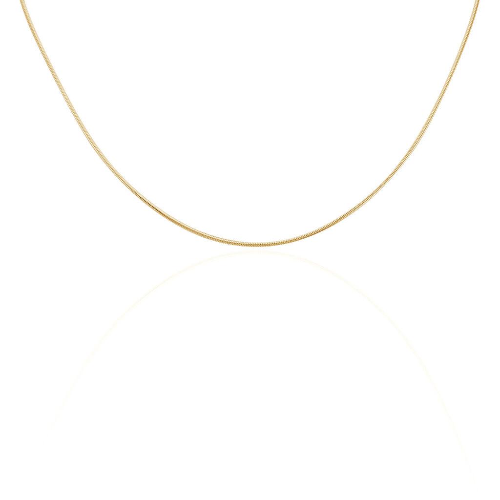Chaîne Norma Maille Queue De Souris Plaque Or Jaune - Chaines Femme | Histoire d'Or