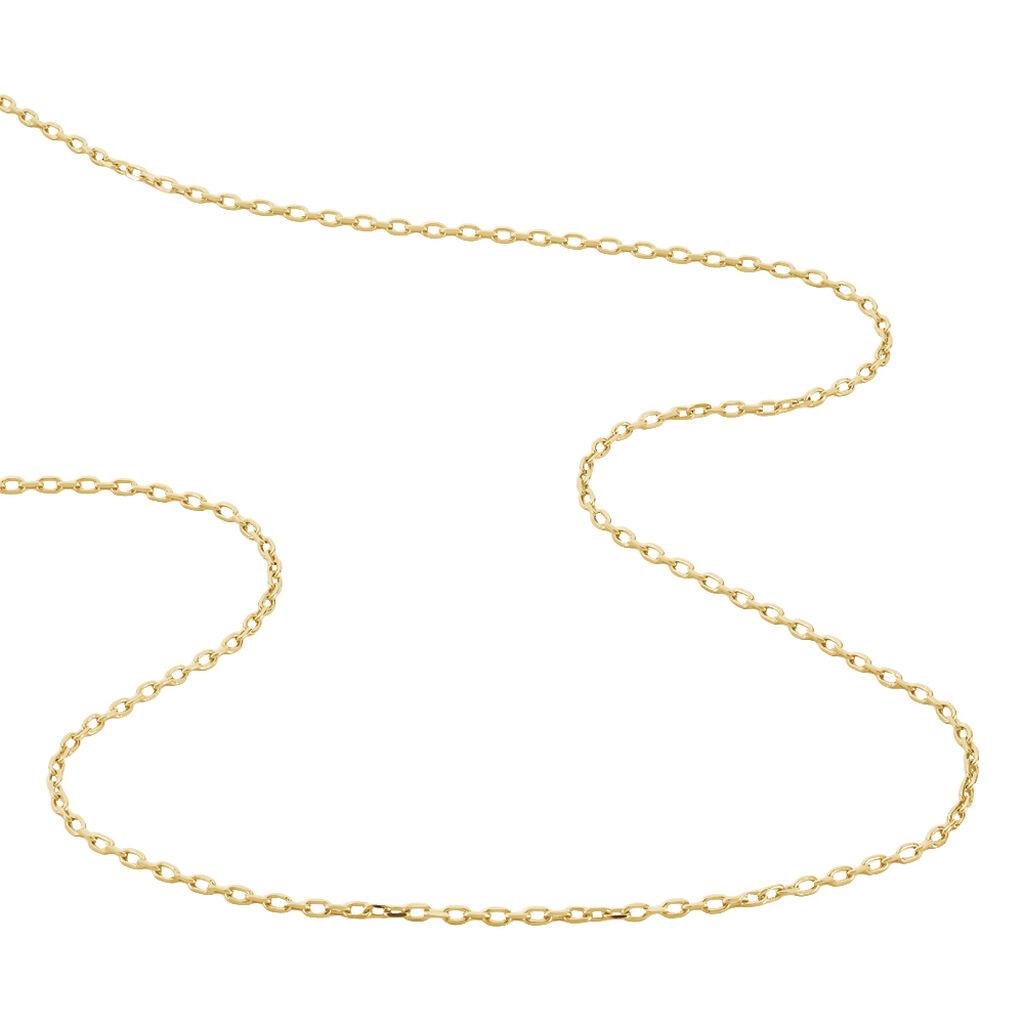 Chaîne Carmela Maille Forcat Plaque Or Jaune - Chaines Homme   Histoire d'Or