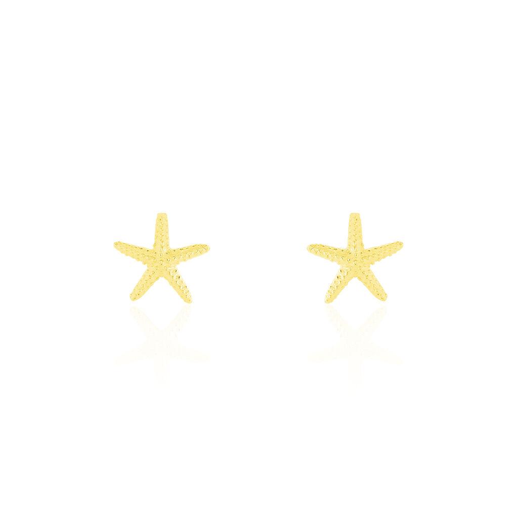 Boucles D'oreilles Or Jaune Aenor Puces - Boucles d'Oreilles Etoile Femme | Histoire d'Or