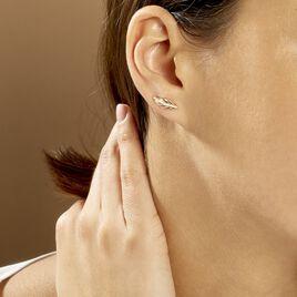 Bijoux D'oreilles Hanae Plaque Or Jaune - Boucles d'Oreilles Plume Femme | Histoire d'Or