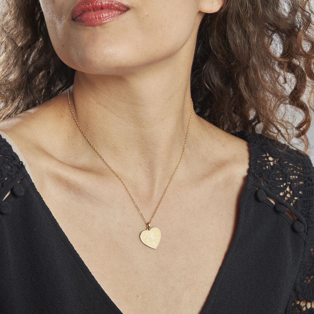 Collier Rauline Plaque Or Jaune - Colliers Arbre de vie Femme | Histoire d'Or