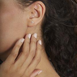 Boucles D'oreilles Puces Or Jaune Convallaria Oxydes - Clous d'oreilles Femme   Histoire d'Or
