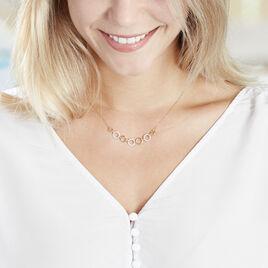 Collier Lutzele Or Bicolore Oxyde De Zirconium - Bijoux Femme | Histoire d'Or