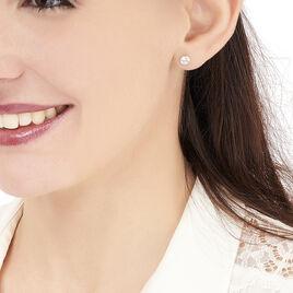 Boucles D'oreilles Puces Daria Serti Clos Or Jaune Oxyde De Zirconium - Clous d'oreilles Femme | Histoire d'Or