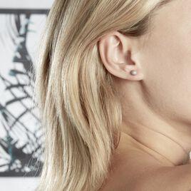 Boucles D'oreilles Puces Or Blanc - Clous d'oreilles Femme   Histoire d'Or
