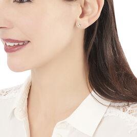Boucles D'oreilles Puces Fulvie Dauphin Or Jaune - Clous d'oreilles Unisexe | Histoire d'Or
