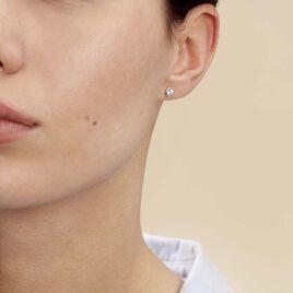 Boucles D'oreilles Puces Elda Serti Clos Or Blanc Oxyde De Zirconium - Clous d'oreilles Femme | Histoire d'Or