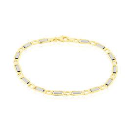 Bracelet Or Bicolore - Bracelets chaîne Homme | Histoire d'Or
