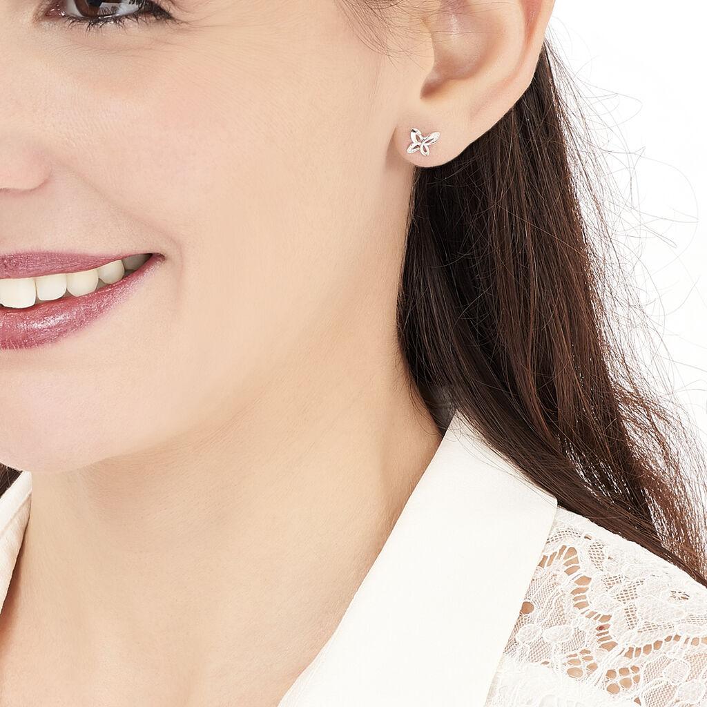 Boucles D'oreilles Puces Papillon Or Blanc Diamant - Boucles d'Oreilles Papillon Femme   Histoire d'Or