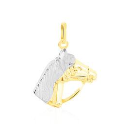 Pendentif Egide Cheval Or Bicolore - Pendentifs Unisexe | Histoire d'Or