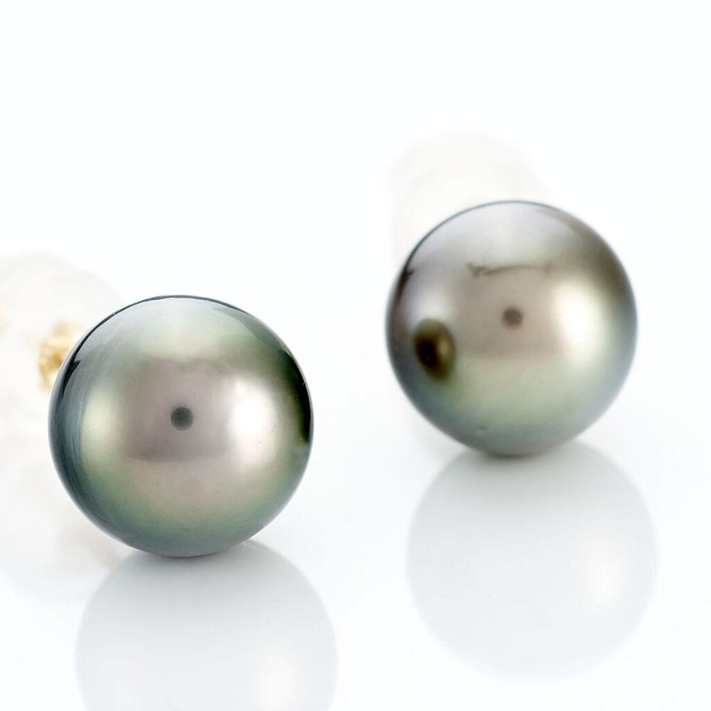 Boucles D'oreilles Puces Alper Or Jaune Perle De Culture De Tahiti - Clous d'oreilles Femme | Histoire d'Or