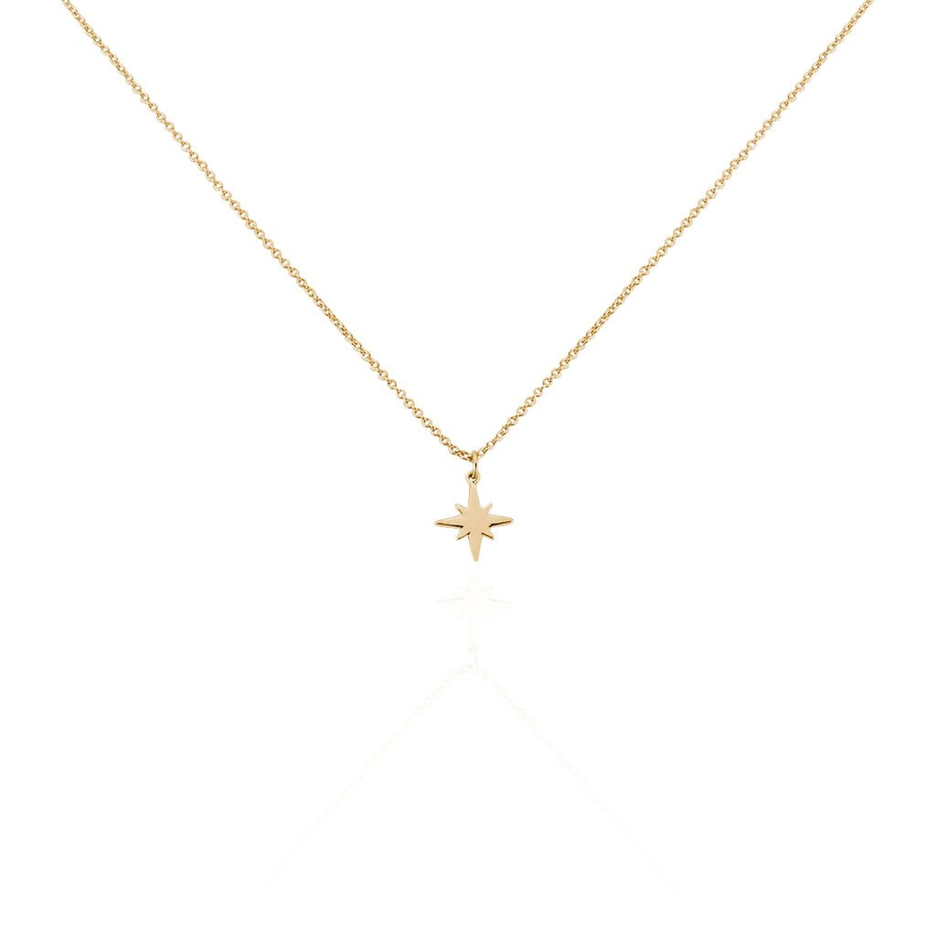 Collier Alisee Plaque Or Jaune - Colliers Etoile Femme | Histoire d'Or