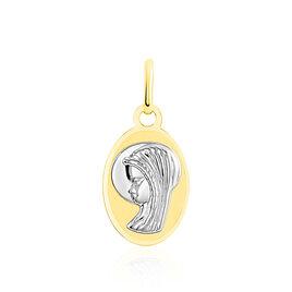 Pendentif Vierge Ovale Or Bicolore - Naissance Enfant | Histoire d'Or